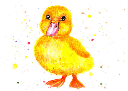 Little duckling. Watercolor illustration. Yellow duckling. Children illustration. Illustration for design, decor.