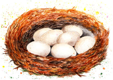Nest with eggs. Watercolor illustration. A birds nest in which there are seven eggs. Illustration for design, decor.