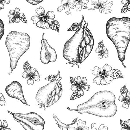Hand drawn seamless pattern with sliced pear. flower and leaves. Engraved design elements Banque d'images