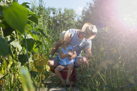 Father and Little girl using a smartphone in the field. Stockfoto