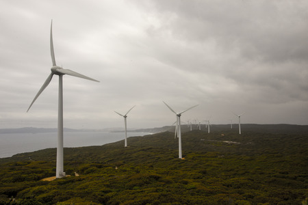 hill station tree: A scenic view of Albany Wind Farm in a cloudy weather Stock Photo