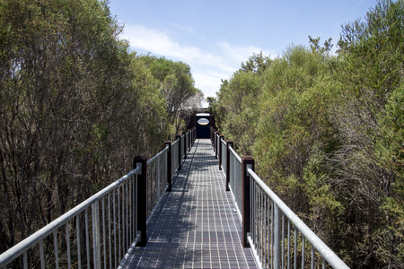 busselton: Boardwalk bridge to Lake Muir Lookout in Western Australia