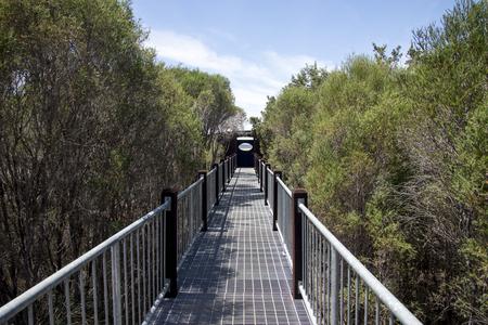 busselton: Boardwalk bridge to Lake Muir Lookout in Western Australia