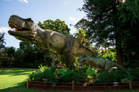 tyrant: Tyrannosaurus Rex family in Perth Zoo as part of Zoorassic exhibition