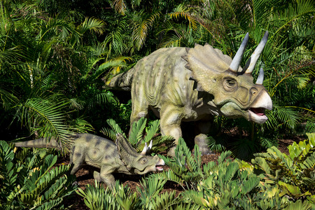zoo as: Triceratops on display in Perth Zoo as part of Zoorassic exhibition