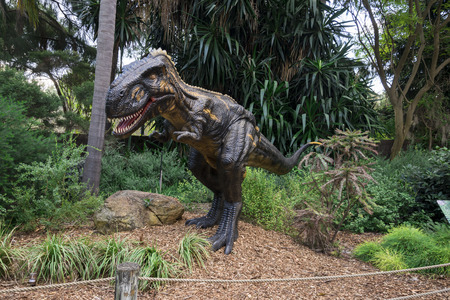 zoo as: Roaring Nanotyrannus display model in Perth Zoo as part of Zoorassic exhibition Editorial