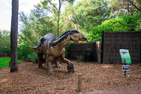 zoo as: Standing Edmontosaurus display model in Perth Zoo as part of Zoorassic exhibition