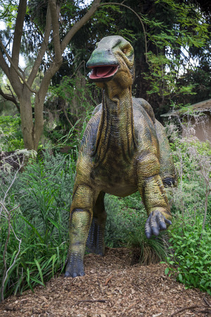 zoo as: Standing Parasaurolophus display model in Perth Zoo as part of Zoorassic exhibition