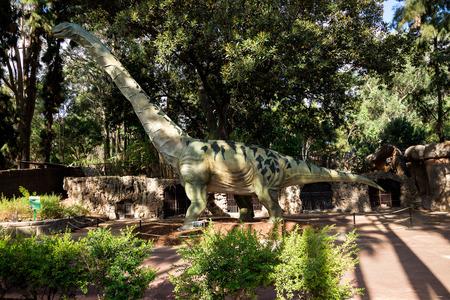 brontosaurus: Walking Argentinosaurus display model in Perth Zoo as part of Zoorassic exhibition. Similar to Diplodocus and Brontosaurus Editorial