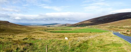 Panorama of a beautiful autumn landscape with grazing sheeps in Cairngorms national park, Scotland Stockfoto