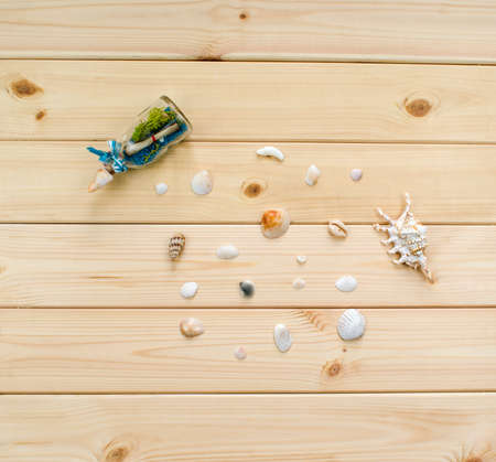 A variety of shells from the seas, rivers, lakes and oceans. Small glass bottle with algae and note for collectors from many beaches of the world on a light wooden background.