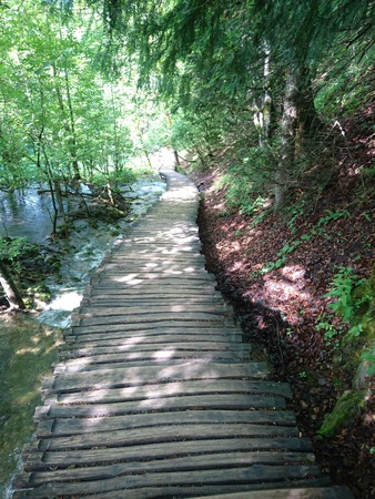 clear path: wooden road