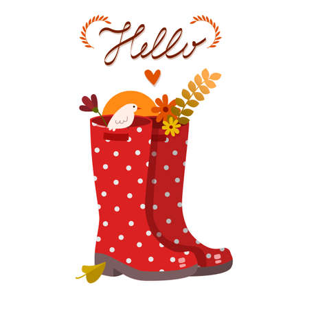 red boots: Red autumn polka dot boots with birds and flowers. On a white background vector image. Illustration