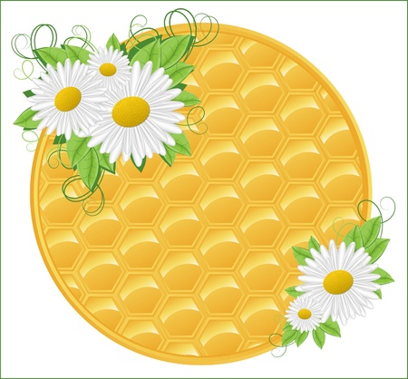 Honeycomb background with flowers Vector