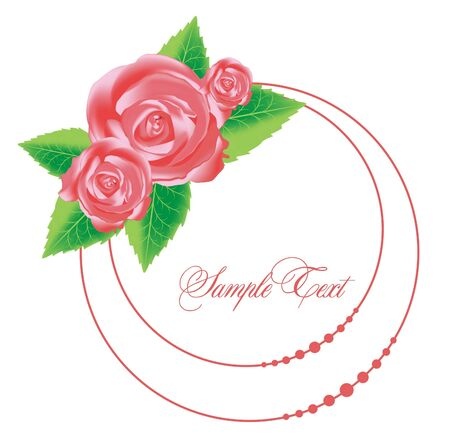 vector pink rose