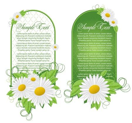 kamille: Vector set floral Banner Illustration