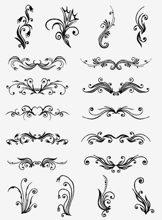 Vectorized Scroll Design. Vector