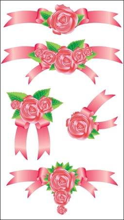 Collection of vector rose with ribbons