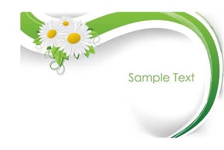 creative background for design with camomile Vectores