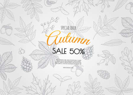 Autumn season banner template with leaves and space for text. Fall season shopping promotional leaflet, flyer, invitation card, advertising vector illustration Illustration