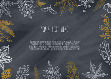 Background with Autumn Leaves . Drawing hand image, vector illustration.