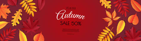 Autumn sale flyer template. Bright fall leaves. Poster, card, label, banner design. Stock Photo