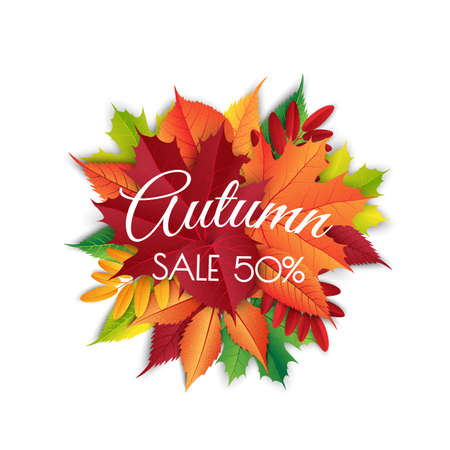 Autumn sale background layout decorate with leaves for shopping sale. Frame leaflet or web banner. Vector illustration template.