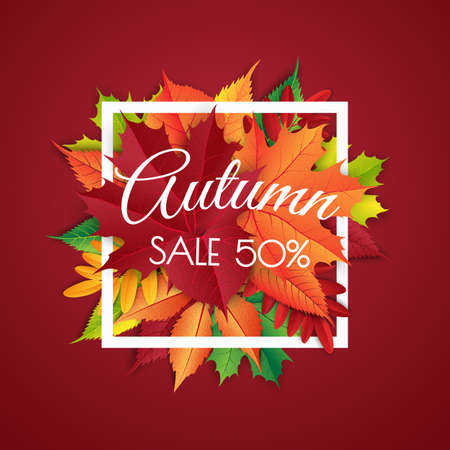 Autumn sale background layout decorate with leaves for shopping sale. Vector illustration template. Illustration