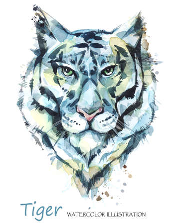 agressive: Watercolor tiger on the white background. African animal. Wildlife art illustration. Can be printed on T-shirts, bags, posters, invitations, cards, phone cases, pillows. Place for your text.