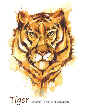 Watercolor tiger on the white background. African animal. Wildlife art illustration. Can be printed on T-shirts, bags, posters, invitations, cards, phone cases, pillows. Place for your text.