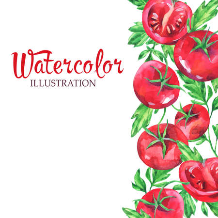 Hand drawn vertical banner with watercolor red tomatoes and leaves on the white background. Fresh summer frame.