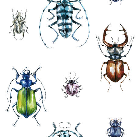 Seamless pattern with colorful beetles. Summer and spring background, watercolor illustration. Entomology. Wildlife set. Animal, insects texture. Can be used for a poster, printing on fabric. Stock Photo