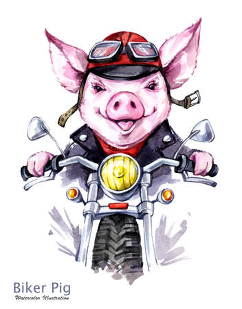 Children illustration. Watercolor grange pig in jacket on motorbike. Funny biker. Transport. Symbol of 2019 year. Perfect for T-shirts, posters, invitations, cards, phone cases.