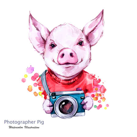 Summer holidays illustration. Watercolor cartoon pig with camera. Funny photographer. Traveling. Symbol of 2019 year. Perfect for T-shirts, posters, invitations, cards, phone cases. Stock Photo