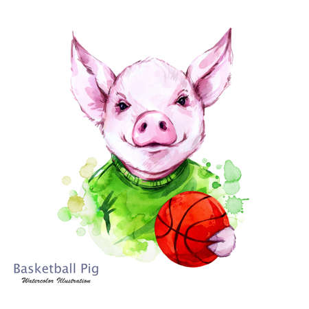Summer holidays illustration. Watercolor cartoon pig with orange ball. Funny baskeball player. Sport. Symbol of 2019 year. Perfect for T-shirts, posters, invitations, cards, phone cases. Stock Photo