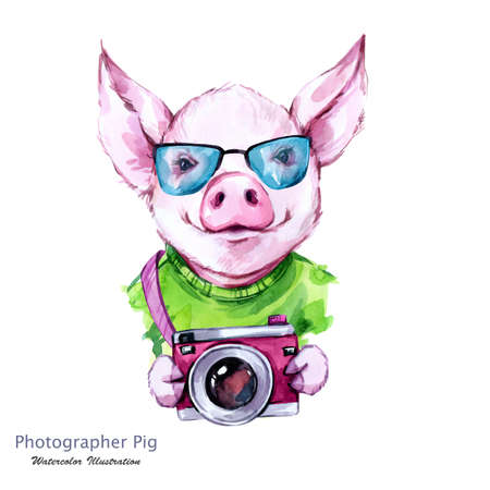 Summer holidays illustration. Watercolor cartoon pig with glasses and camera. Funny photographer. Traveling. Symbol of 2019 year. Perfect for T-shirts, posters, invitations, cards, phone cases.