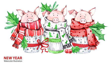 2019 Happy New Year illustration. Christmas border. 3 Cute pigs in winter scarves. Greeting watercolor cakes. Symbol of winter holidays. Zodiac sign. Perfect for calendar and celebration card.