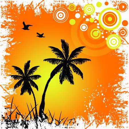 Tropical sunset illustration in white grunge frame illustration
