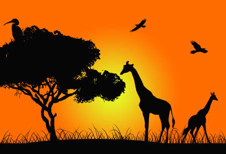 African sunset illustration with animal silhouettes illustration