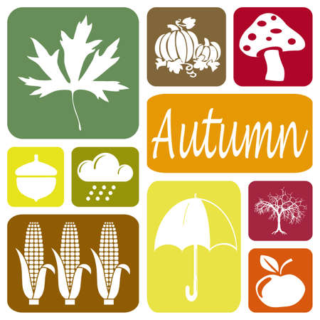 Wallpaper with autumn symbols in rectangles
