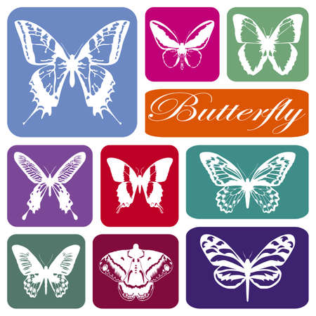 Wallpaper with butterflies silhouettes in colorful rectangles Stock Photo