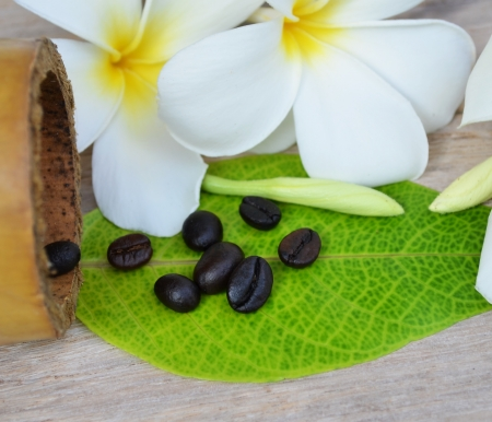 coffeetree: Coffee Beans over Wood Background