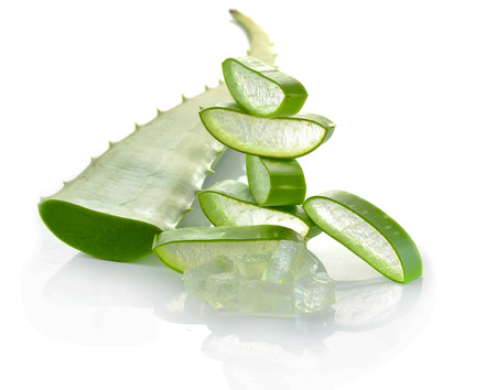aloe vera fresh leaf isolated white background 版權商用圖片 - 30256601