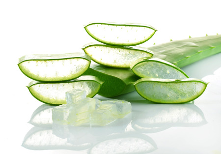 aloe vera fresh leaf isolated white background