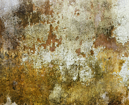corroded: Old wall  Stock Photo