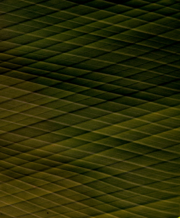 Seamless texture background - black metal surface square perforated. photo