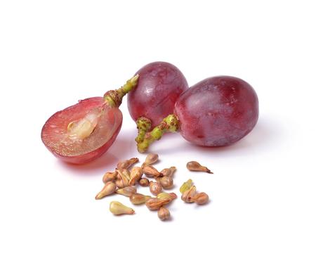 grape seeds on white background macro closeup Standard-Bild