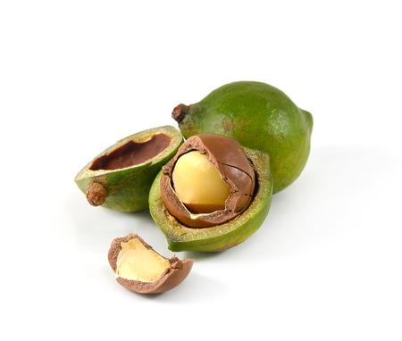 Macadamia-Nüsse auf weißem Hintergrund Standard-Bild - 33902170