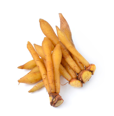finger root Ingredients for Thai Cuisine isolate on white 스톡 콘텐츠