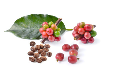 colombian food: coffee beans on white background. Stock Photo